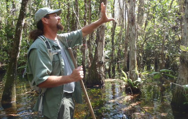 big-cypress-swamp-walk-1